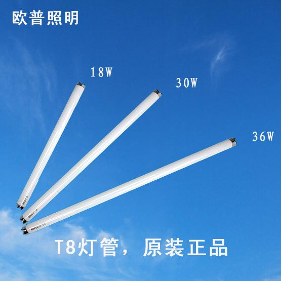 光源-T8管