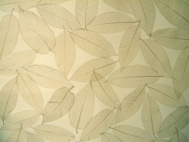 无纺树叶墙纸