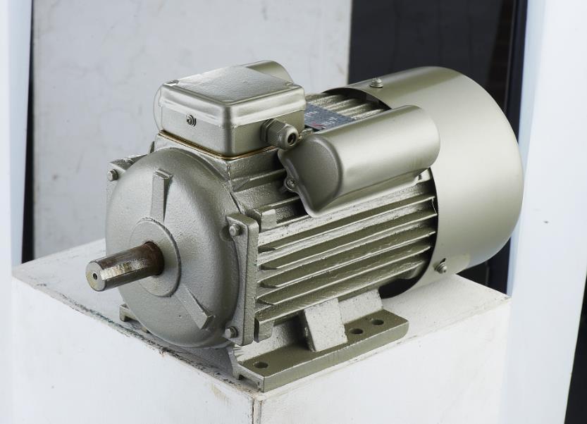 单相双值电容异步电动机